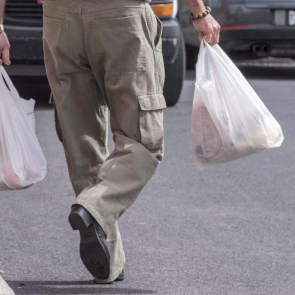 PLASTIC BAGS – SOBEYS TO REMOVE FROM STORES BY FEBRUARY 2020