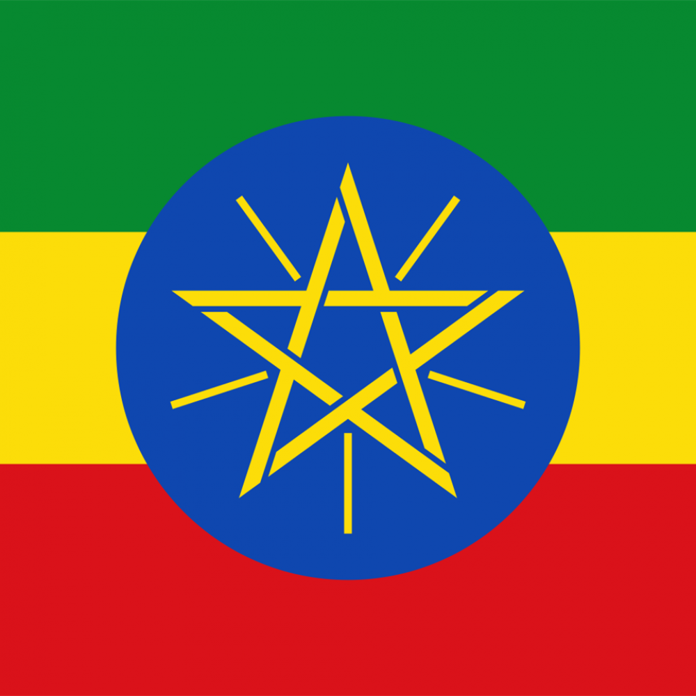 Trade and Investment in Ethiopia Business Forum, Toronto, Canada