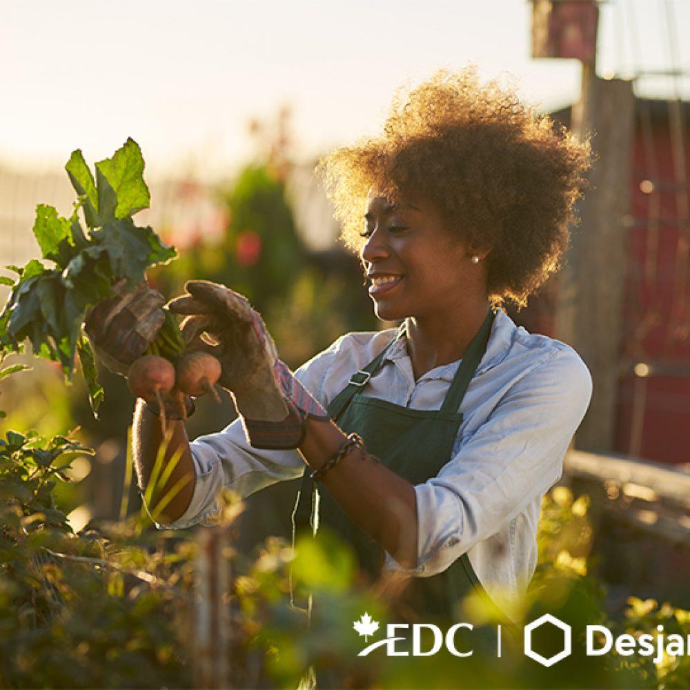 EDC Webinaire : Filière agroalimentaire — élargir le champ des possibilités