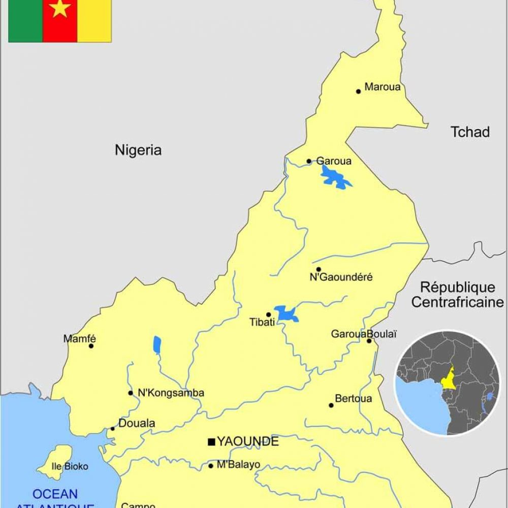 Par anticipation: FELICITATIONS Au Cameroun! (Gaetan, Yvette et Paul-Thierry)/ Suite des réunions virtuelles et privées avec 3 compagnies canadiennes organisées par Joama Consulting/ECCA-MB, Canada/Africa T.M.