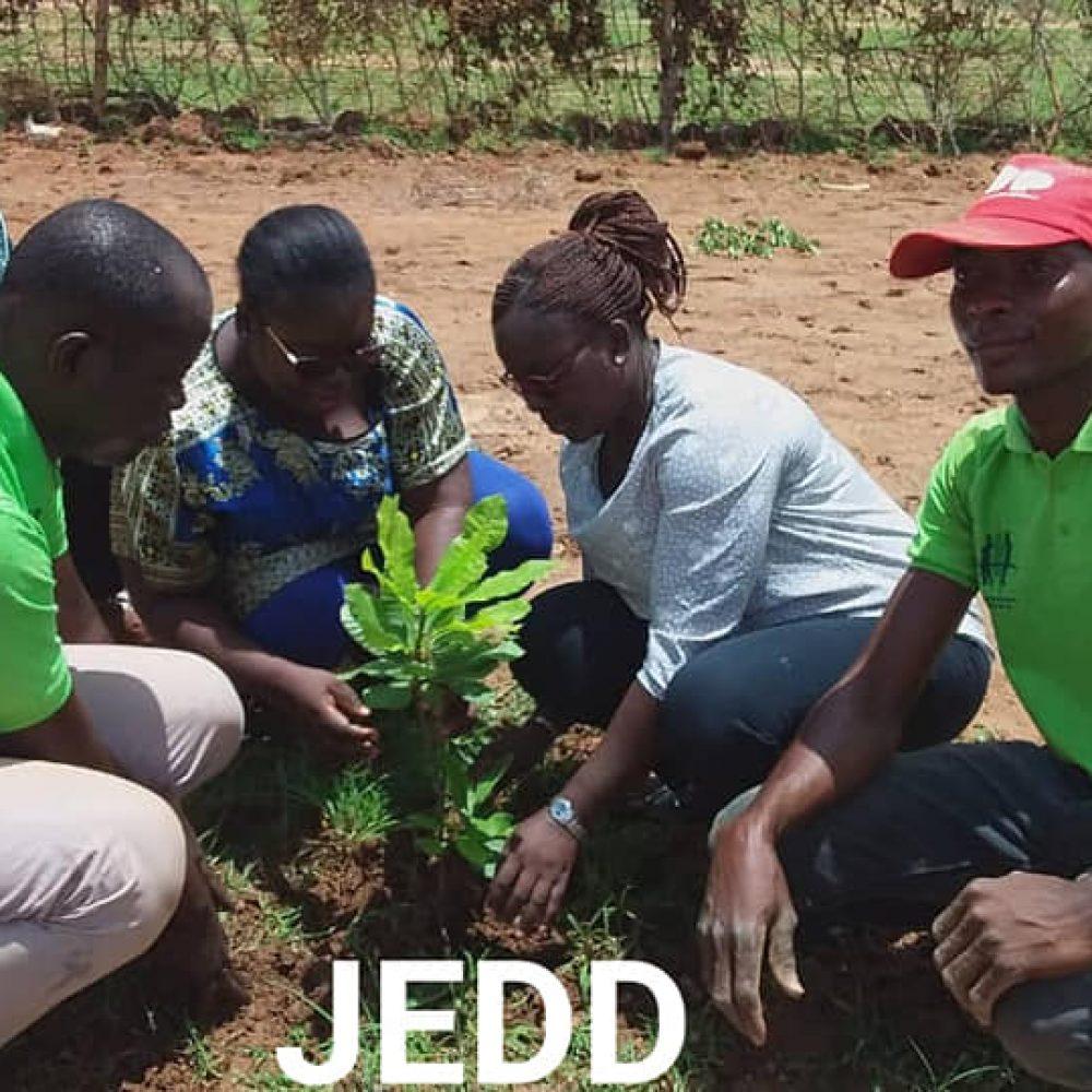 """BURKINA FASO / JEDD (ONG) EN ACTIVITES HEBDOMADAIRES: """"*Planter un arbre c'est sauver une vie*/ 2021 un nouveau défi :***Pour un Burkina vert engageons nous chers membres, amis et partenaires***"""""""