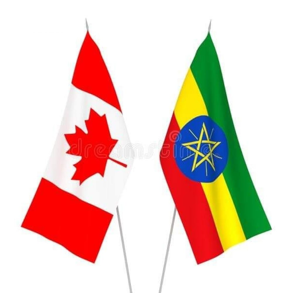 """CANADA – MAKWIN HOUSING SOLUTIONS/SYSTEMS – WEEKLY INFO, JUNE 28, 2021: """"ETHIOPIA IS THE SECOND VALIDATED FOR AFRICA/ ETHIOPIE EST LE DEUXIEME VALIDÉ POUR L'AFRIQUE""""-AFFORDABLE HOUSING FOR A GROWING POPULATION / (LE FR SUIT)"""