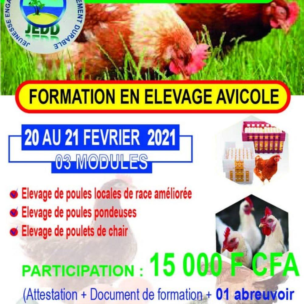 """BURKINA FASO / JEDD (ONG) EN ACTIVITES HEBDOMADAIRES: """"souvenir du 13 fev. 2021: FORMATION EN ELEVAGE AVICOLE"""" ."""